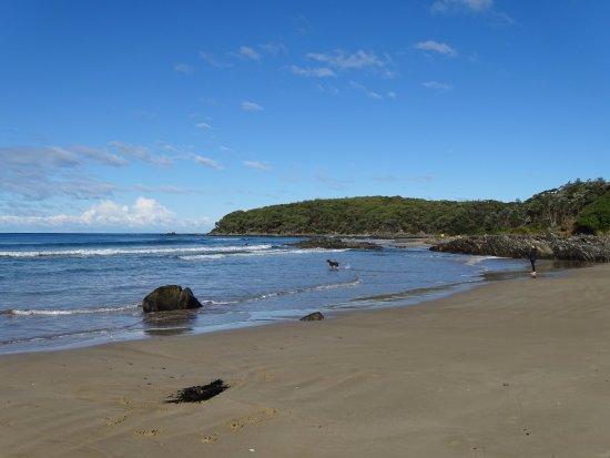 Cape Conran, أستراليا: Cape Conran Nature Trail