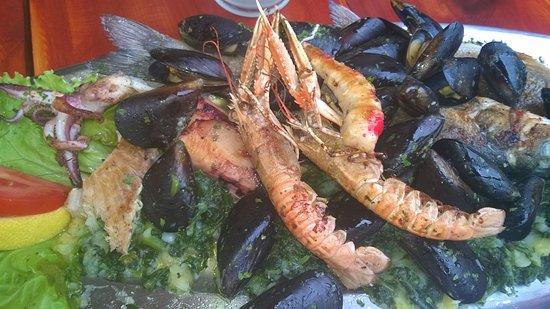 Gajeta Konoba & Pizzeria : fish plate