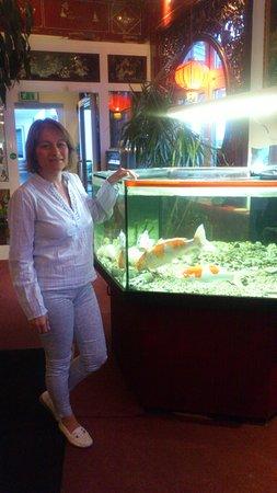 Binzen, Germany: Lucky moon-aquarium