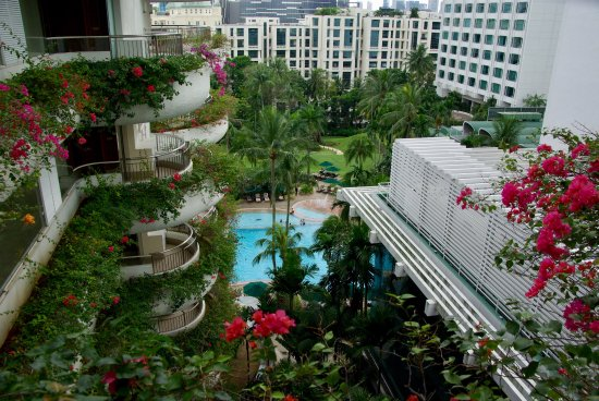 Shangri-La Hotel, Singapore: looking out onto the pool and garden