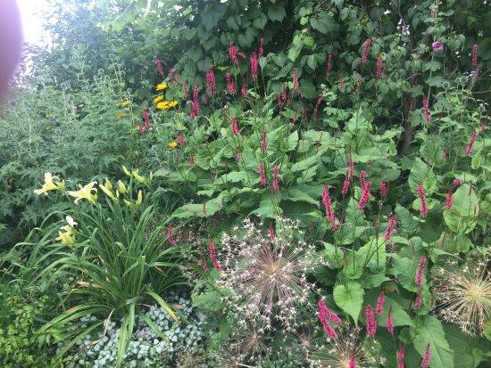 Clarksburg, Canadá: Carpe Diem Gardens