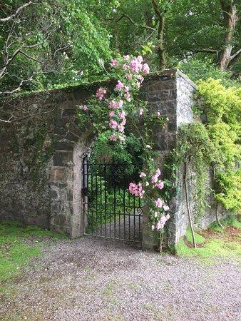 Muckross House, Gardens & Traditional Farms: Flot port i baghaven