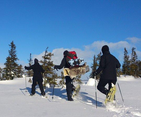 Salen, Sweden: Snöskovandring i Sälen