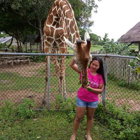 Busuanga Island, Filipina: IMG_20170711_213303_654_large.jpg