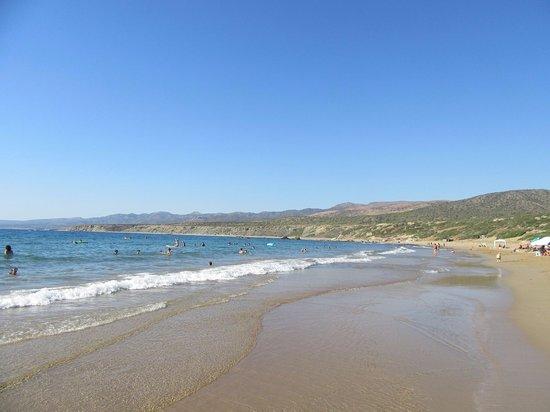 Paphos District, Cyprus: Так выглядит пляж Лара Бич