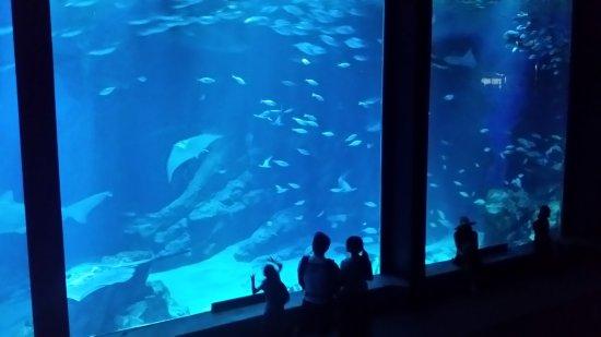 海中道海洋世界