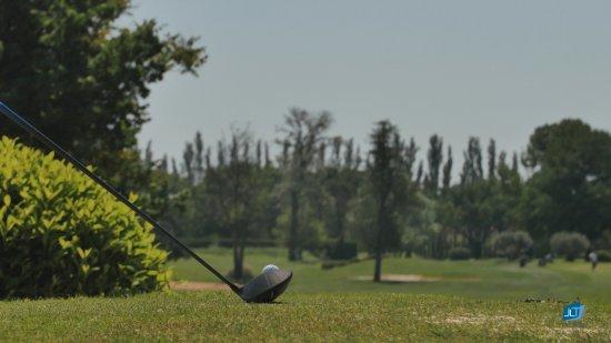 Golf Grand Avignon: Départ du 16