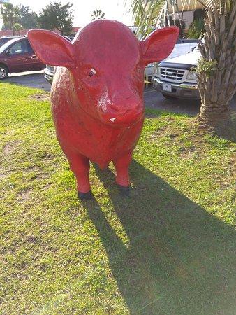 Dillon, Южная Каролина: IMG_20170719_185040_large.jpg
