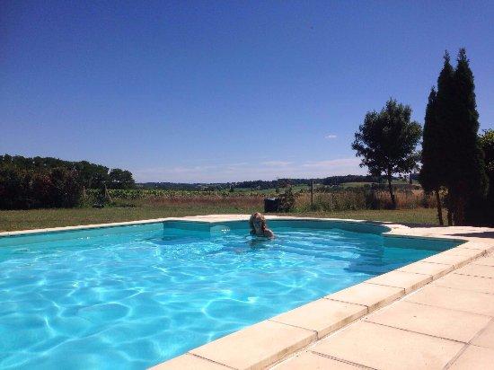 Mooie rustige lokatie, heerlijk zwembad