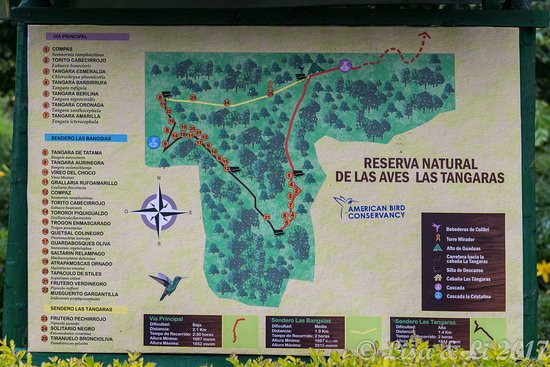 Map of the Las Tangaras Reserve Colombia Picture of Las Tangaras
