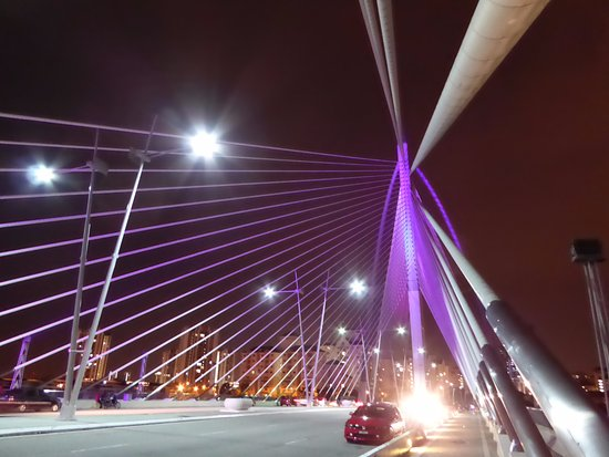 Le pont de Putrajaya : 面白い橋です