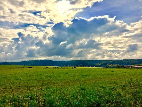 Tanne, Germany: Wanderungen mit Me(e)hrblick? Für jedermann inklusive!