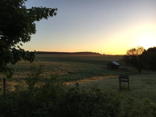Tanne, Germany: Sonnenuntergang gefällig? Romantik inklusive! Ihr Kuschel-Harz.