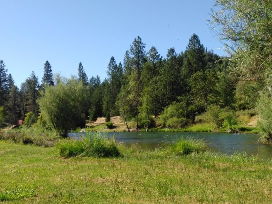 Lewiston, Kalifornia: Trinity River Resort & RV Park
