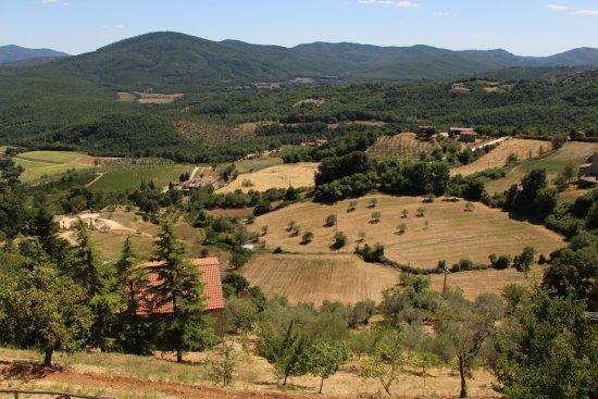 Chiusdino, Italy: Veduta panoramica
