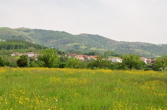 Foto de Arizkun
