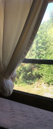 Mineral, วอชิงตัน: Mt. Rainier view room.   It was nice but only has one outlet, no tv and the window faces the mou