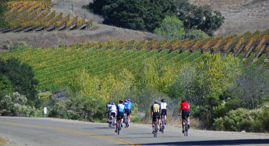 Santa Barbara Wine Country Cycling Tours - Day Tours: Pedaling through the Santa Rita Hills