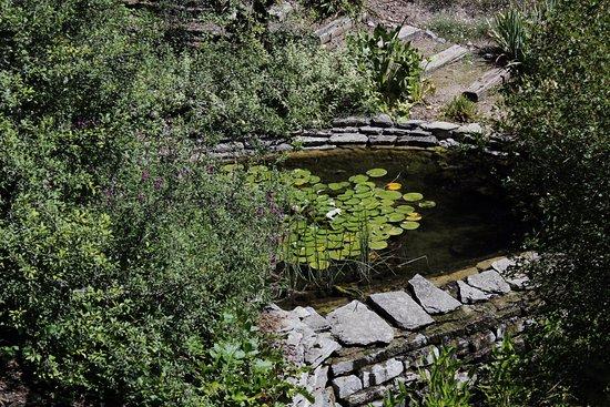 Jardin botanico de Santa Catalina: Jardín Botánico Santa Catalina. Tres Puentes. Álava.
