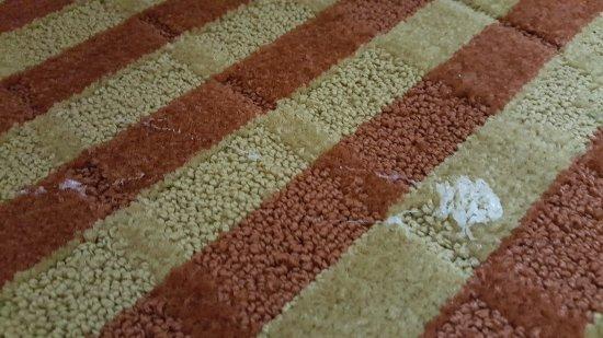 Comfort Inn & Suites Eastgate: white substance on carpet