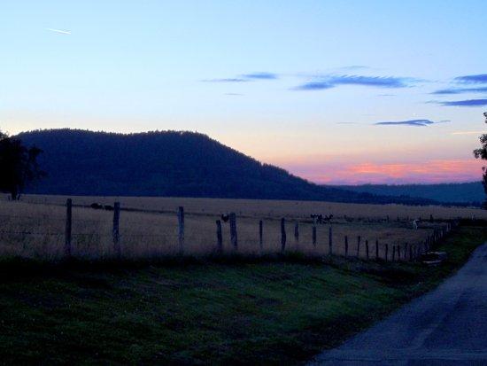 Corcieux, France: Vue arrière gite Ormeaux