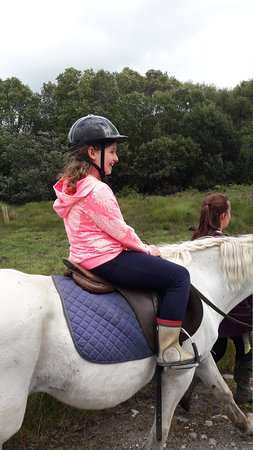 Eclipse Ireland Adventure and Equestrian Centre: 20170727_163617_large.jpg