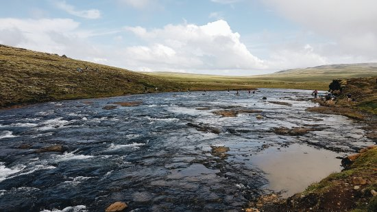 Akranes, Island: Down crossing 2nd stream (Copyright Mimi Ying)