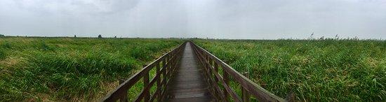 Foto de Podlaskie Province
