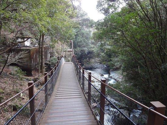 Kawazu Odoriko Takimi Bridge