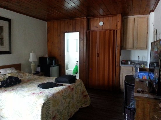 Surf Studio Beach Resort: Tiny all-in-one room