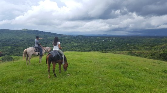 Franklin's Horseback Riding: IMG-20170728-WA0004_large.jpg