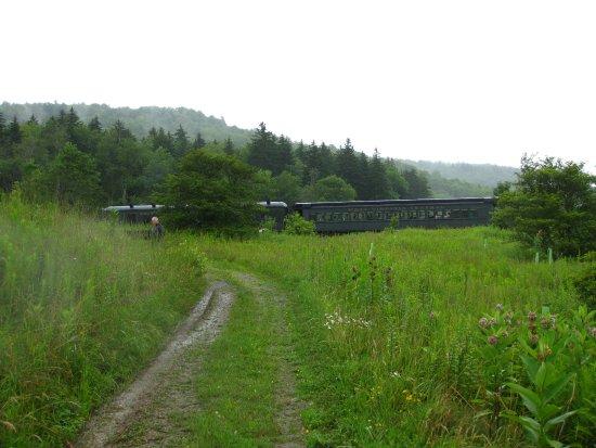Durbin and Greenbrier Valley Railroad : Cheat Mountain Salamander Exterior