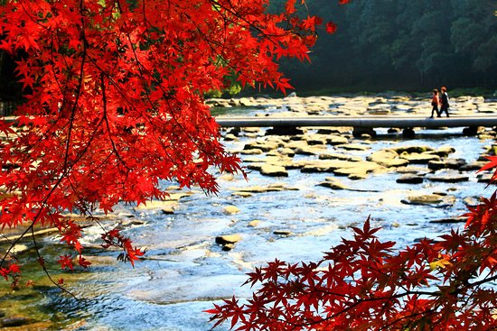 Sekinoo Fall: 晩秋の関之尾