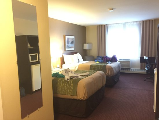 Comfort Inn Halifax: Clean and inviting