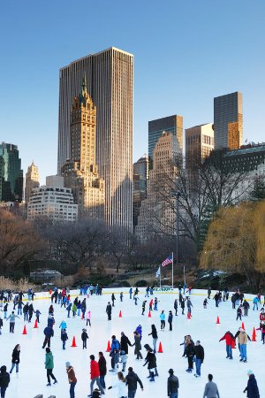 Hasbrouck Heights, NJ: Winter In Central Park NYC