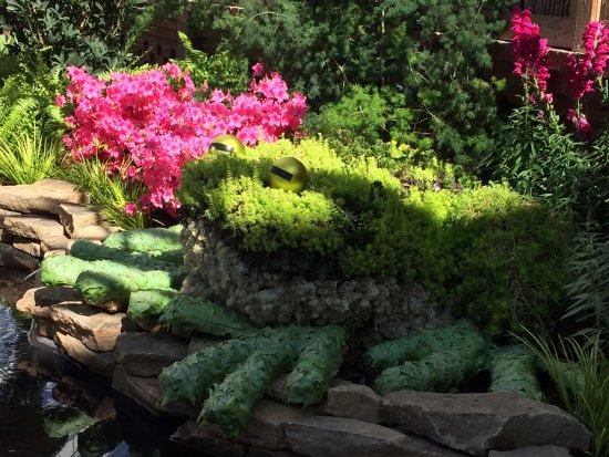 菲普斯溫室植物園照片