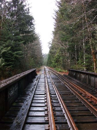 Fanny Bay, Canada: EXCITING TRAIN TRESTLE