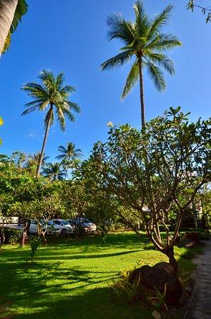 First Bungalow Beach Resort: Tropicall Garden
