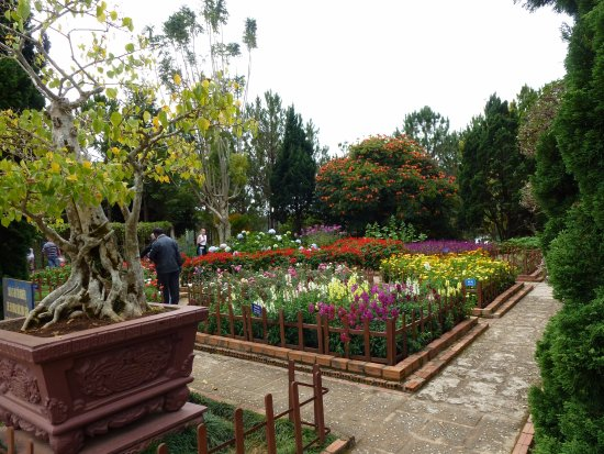 Thien Vien Truc Lam: Some of the beautiful gardens