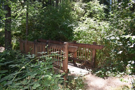 Baker Bay Park Updated 2017 Campground Reviews Oregon