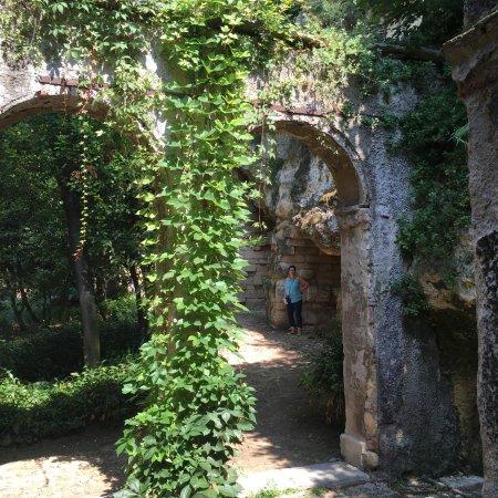 Ivy arches picture of palazzo giardino giusti verona for B b giardino giusti verona