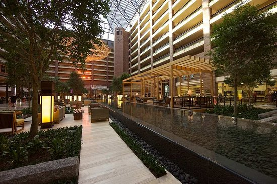Best Rooms Hilton Anatole Dallas