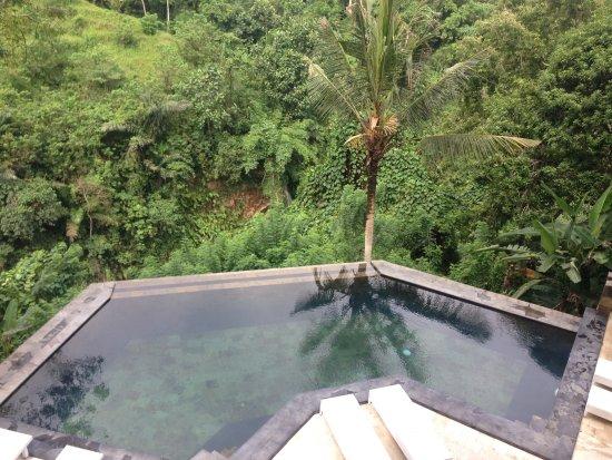 Beji Ubud Resort: photo1.jpg