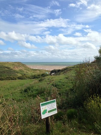 Brighstone, UK: View walking down the path to the beach