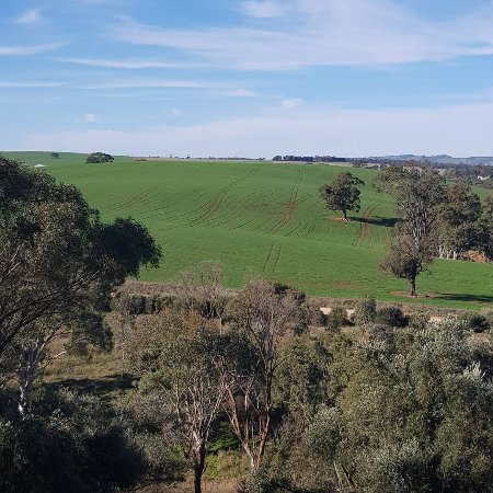 Lyndoch, Australien: IMG_20170728_165416_900_large.jpg