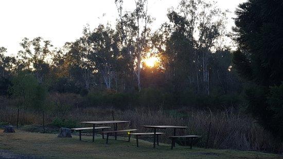 Mundubbera, ออสเตรเลีย: 20170727_065500_001_large.jpg