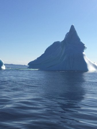huge selection of a9fe8 3fc2f Iceberg Man Tours - Picture of Iceberg Man Tours ...