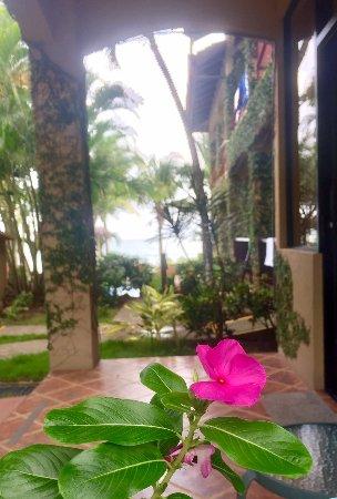 Playa Hermosa รูปภาพ