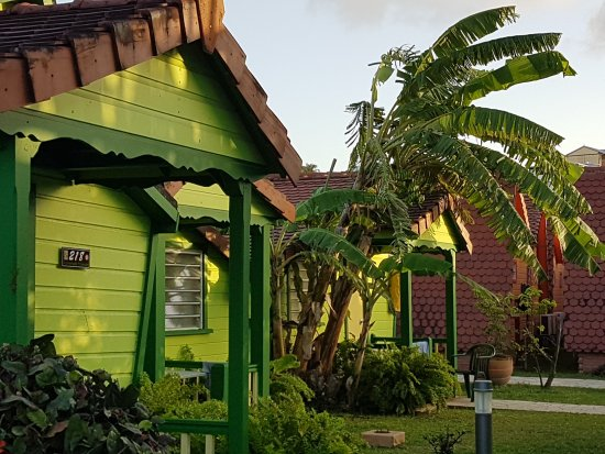 Hôtel Bambou : Les bungalows