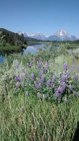Ana's Grand Excursions: Grand Teton National Park